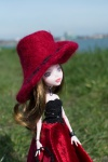 2017 Monster high Lady in red-5.jpg